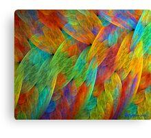 Feathers of the Rainbow Bird Canvas Print