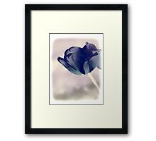 Tulip Time Framed Print