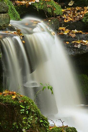Smithills Waterfall by Steve  Liptrot