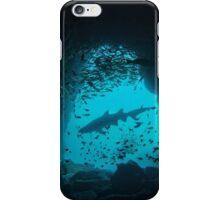 Grey Nurse Shark in Fish Rock Cave iPhone Case/Skin