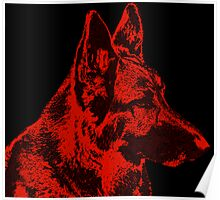 German Shepherd Dog in Red Poster