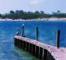 St. Vincent Island, FLA by Rhonda Strickland