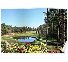 Isabella Golf Course, Hot Springs Village Poster