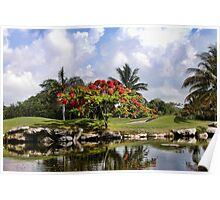 PlayaCar Golf Course, Riveria Maya Poster