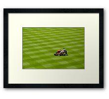 Grass...grass....more grass! Framed Print