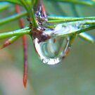 Drip-Drop Rainy Tears by MaeBelle