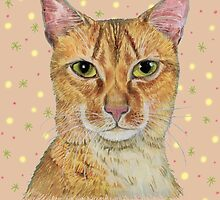 Shy Long haired Abyssinian cat by didielicious