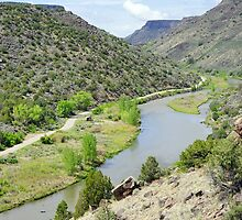 Rio Grande I by Harry Oldmeadow