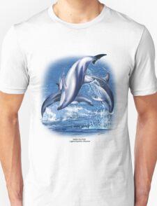 DUSKY DOLPHIN C T-Shirt