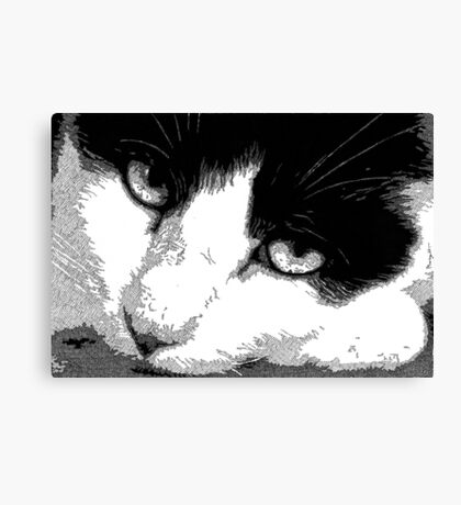 Pen and Ink Resting Cat Canvas Print