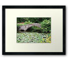 Bridge over pond Framed Print
