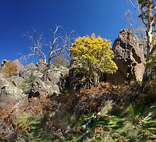 Panorama at Hanging Rock by Norman Repacholi