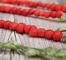 Wild Strawberries by Olli Puustinen