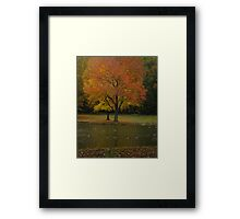How I See It Framed Print