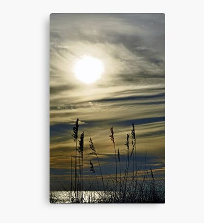 Late October Canvas Print