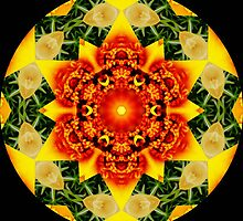 Three Color Kaleidoscope by Winona Sharp