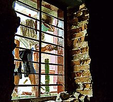 Cambodia - Workman at the Window by Mike Mahalo
