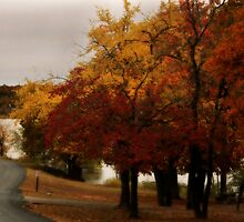 Autumns Serenity by Tonye Banks