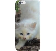The Art of Creeping iPhone Case/Skin