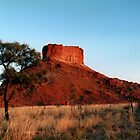 Babrongan Tower, Great Sandy Desert, Western Australia by Lozzie5243