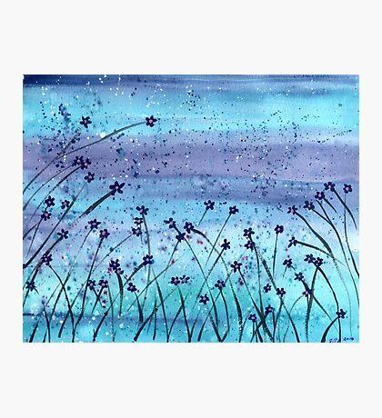 Evening Dew Photographic Print