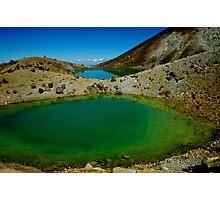 Nature's true colours  Photographic Print