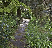 up the garden path by doug hunwick