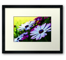 Bright and Fractilius Framed Print