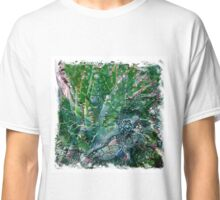The Atlas Of Dreams - Color Plate 107 Classic T-Shirt