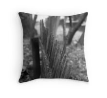 Rickety Picket Throw Pillow