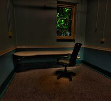 Are We Alone? - Tarban Creek Lunatic Asylum - The HDR Experience by Philip Johnson