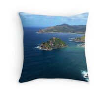 Great Barrier Island from the air........! Throw Pillow