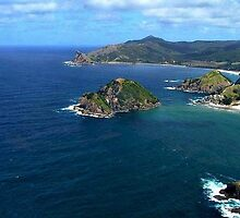 Great Barrier Island from the air........! by Roy  Massicks