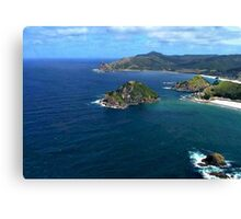 Great Barrier Island from the air........! Canvas Print