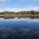 The Lake by Catherine Davis