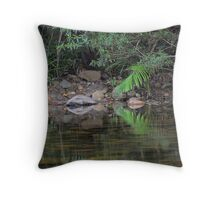 Reflections in the Stillness Throw Pillow