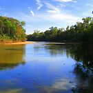Oconee River Beach© by walela