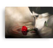 Dog with Rose - Shelter Art Metal Print