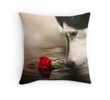 Dog with Rose - Shelter Art Throw Pillow