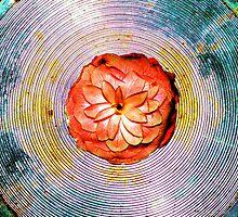 mandala flower by tymzsy