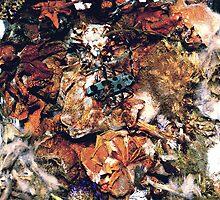 rosalia moldy flowers  by tymzsy