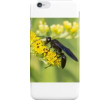 Great Black Wasp iPhone Case/Skin