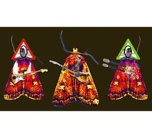 Moth Guitarists Photographic Print