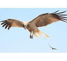 Kite Flying Photographic Print