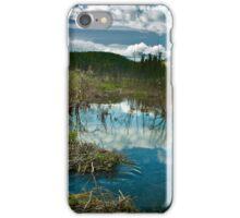 McIntyre Creek iPhone Case/Skin