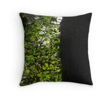 In and Out of Shadows With a Hatful of Tricks Throw Pillow