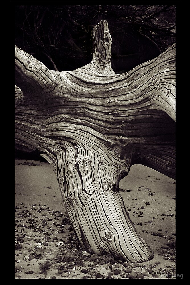 Beach Dementor  by Pagwag