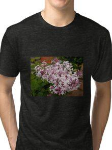 Pretty Pink Blossoms Tri-blend T-Shirt