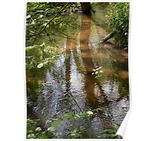 Reflections In A Sandy Stream Poster