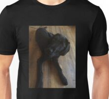 Scruffy Black Dog on Wood Floor Unisex T-Shirt